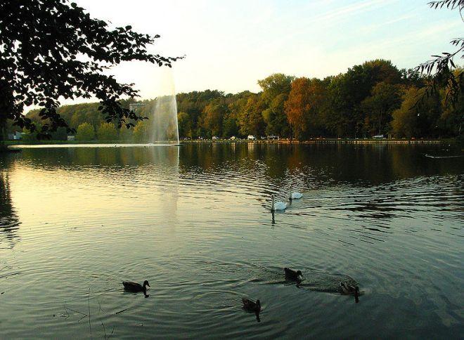 lac de genval © jean-pol grandmont (1)