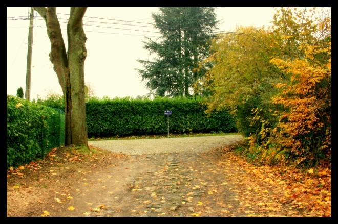 avenue hector steyaert © florie blaise