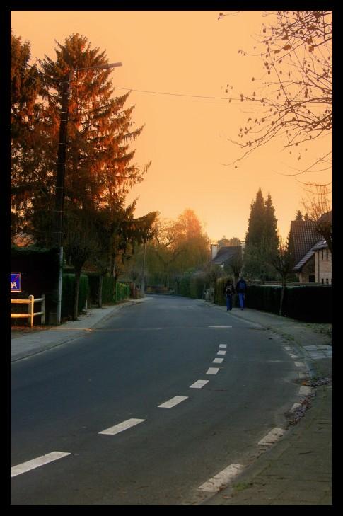 avenue roger de grimberghe © florie blaise (3)
