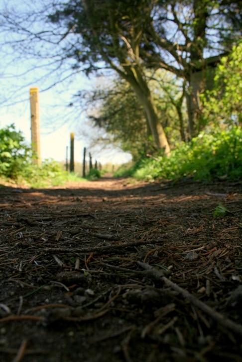 sentier passiche 2 © florie blaise