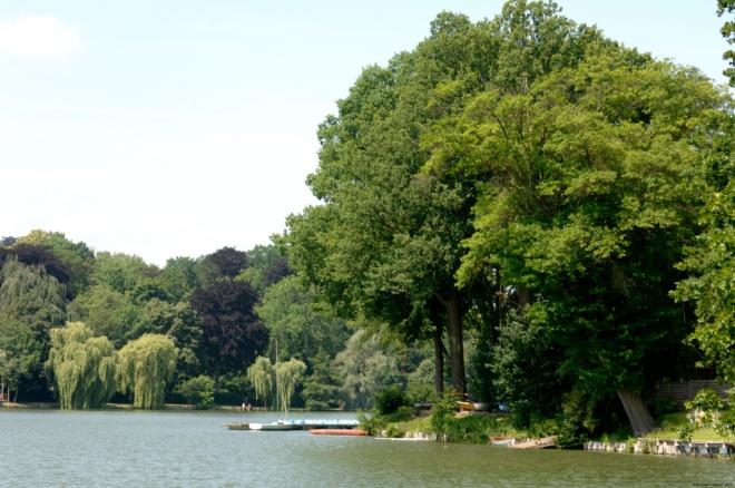 lac de genval © philippe haulet (3)