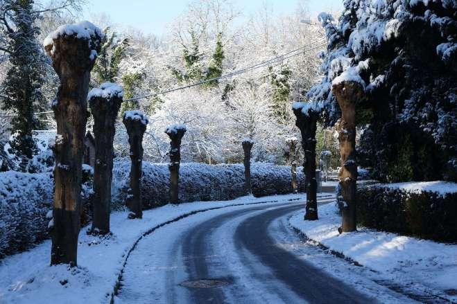 Avenue du Bois du Héron Rixensart (neige) 12.2014 © Eric de Séjournet