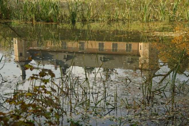 Château de Rixensart 20081106 Drève des Etangs © Eric de Séjournet (9)