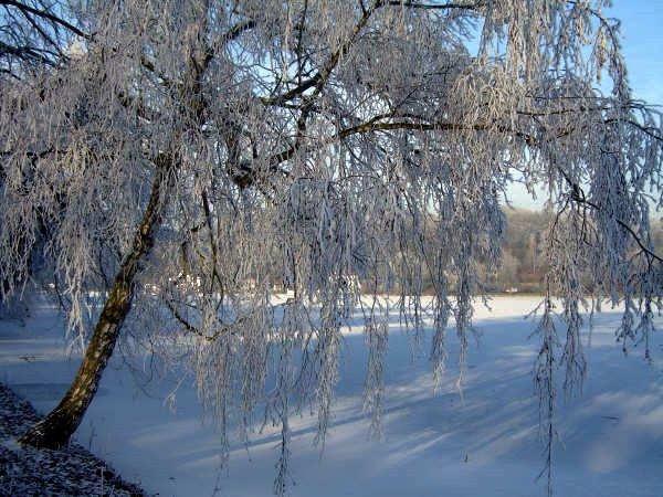 lac de genval © véronique wasnaire