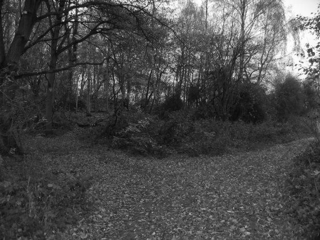 a la croisée des chemins rosiérois © elèves de l'ecole communale de rosières