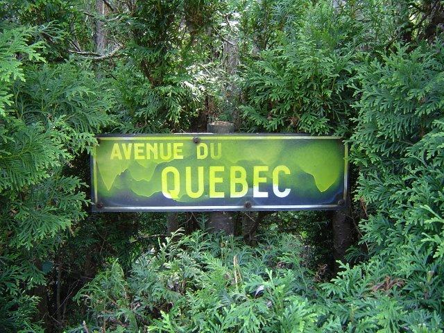 avenue du québec © gilbert nauwelaers