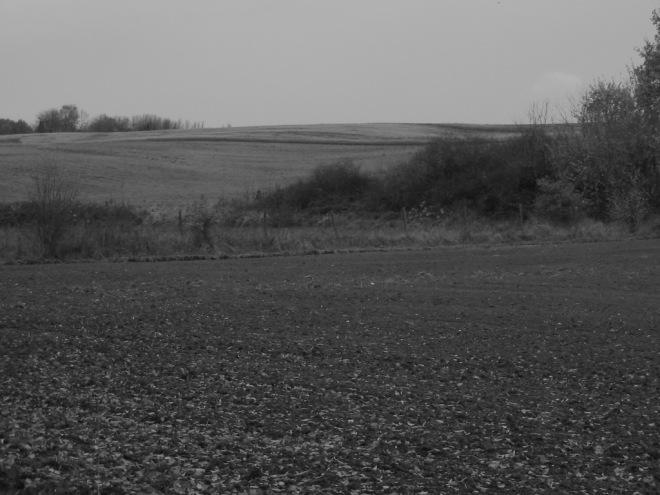 chemin de la carrière © elèves de l'ecole communale de rosières