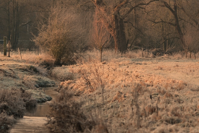 vallée de la lasne aube 2 © gilbert nauwelaers