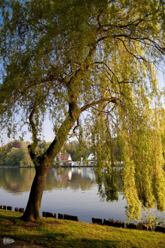 4 lac de genval © sébastien rofidal