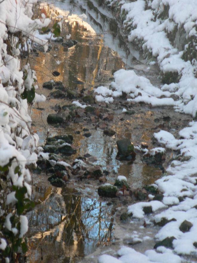 ruisseau du château © monique d'haeyere