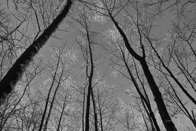 7 vallée de la lasne © gilbert nauwelaers