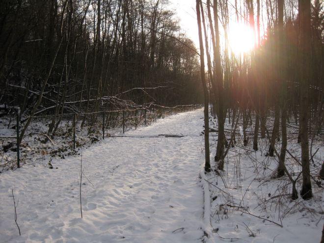 sentier reliant les papeteries au carpu © françoise leleux