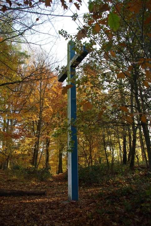 Drève du Calvaire 20081108 © Eric de Séjournet (25)