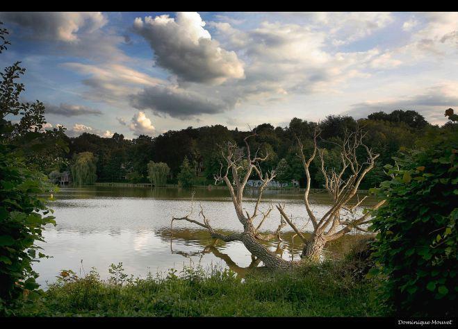 lac de genval © dominique mouvet