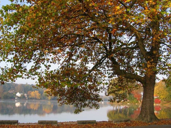 lac de genval © vanina dubois