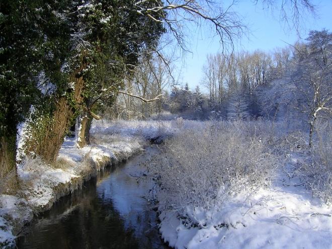 vallée de la lasne © francis dominé
