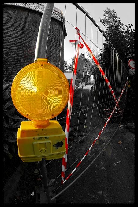 chemin des forsythias 20090912 © laurent gilson