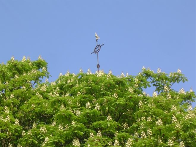 eglise saint-françois-xavier © gilbert nauwelaers