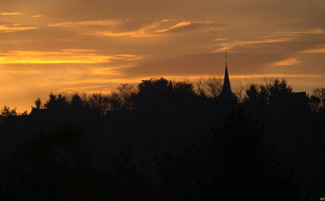 Vallée de la Lasne Carpu 11.2014 © Gilbert Nauwelaers - 6