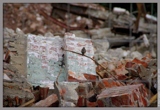 24 anciennes papeteries de genval © marie goeyens
