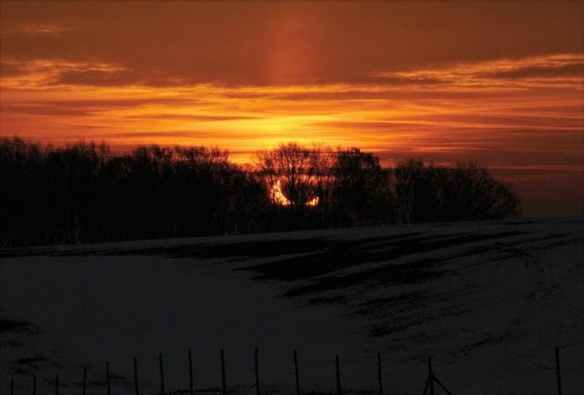 5 eclipse de soleil par la lune 20110104 © marie goeyens