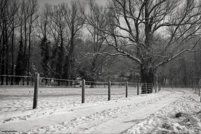 chemin du belloy © geoffrey bailleux