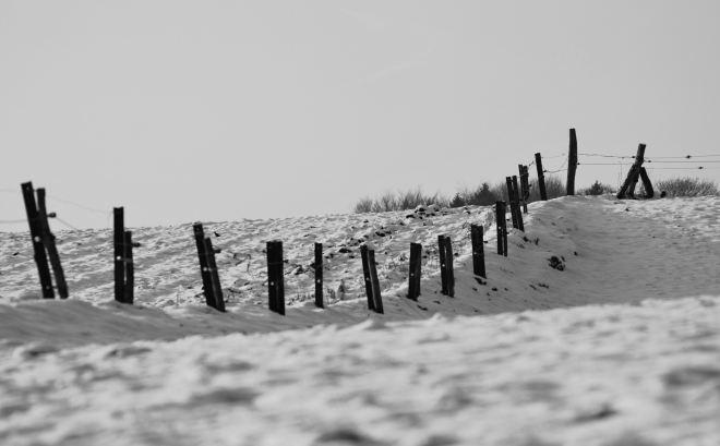 sentier du plagniau 20100131 © gilbert nauwelaers (2)