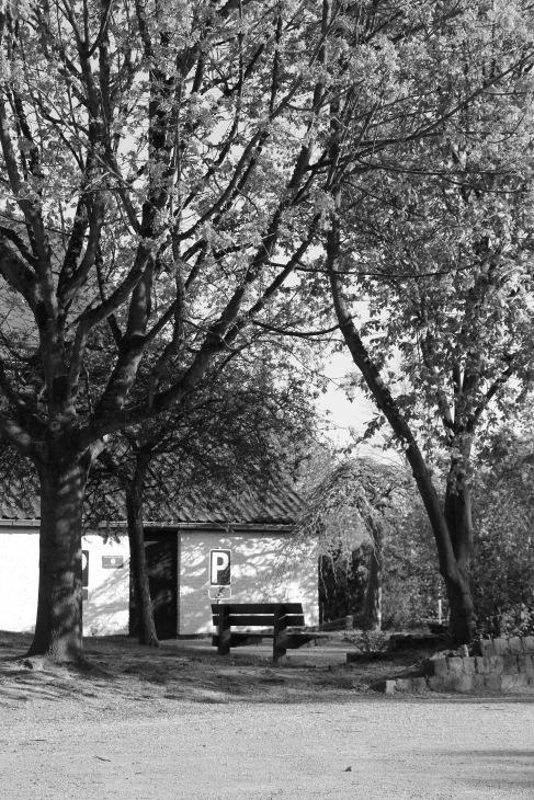 ferme de froidmont © fabian geets