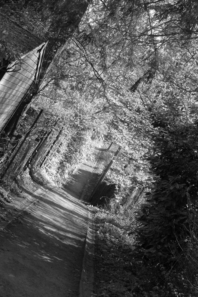 sentier chapelle robert © fabian geets