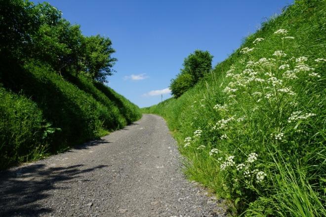 20120514 Chemin du Tilleul Rosières © Eric de Séjournet