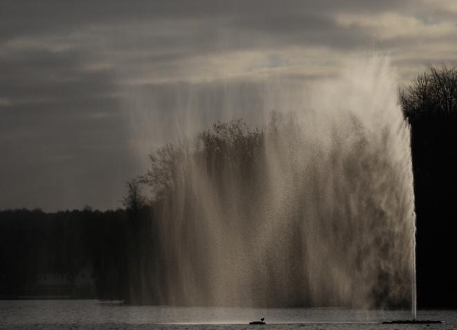 jet du lac de genval 1 © gilbert nauwelaers