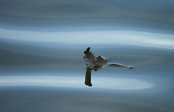 lac de genval © béatrice de wilde