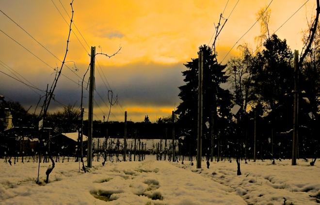 villa beau-site 12.2012 b © pierre gheux