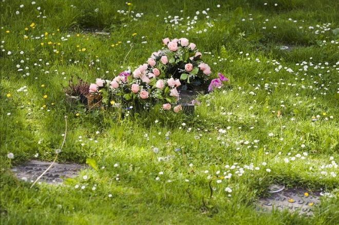 17 cimetière pour animaux à rosières © dominique mouvet