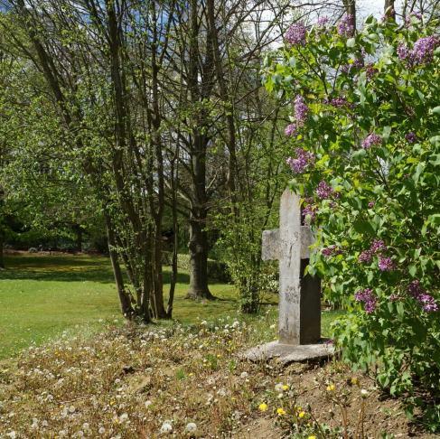 Croix d'Occis Parc communal 4.2012 © Eric de Séjournet-006