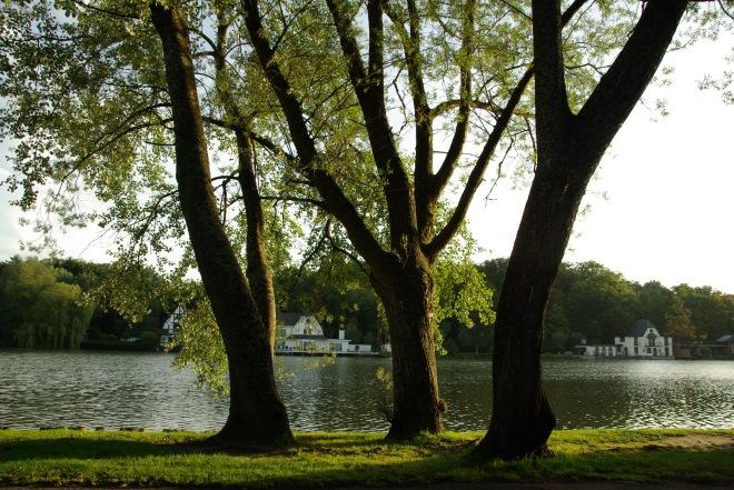 Lac de Genval 8 @ Eric de Séjournet-9