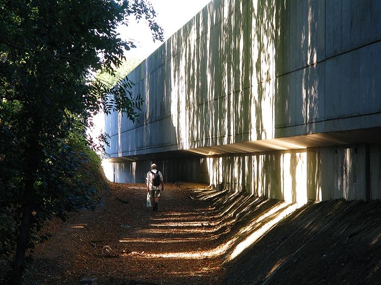Sentier des Rossignols