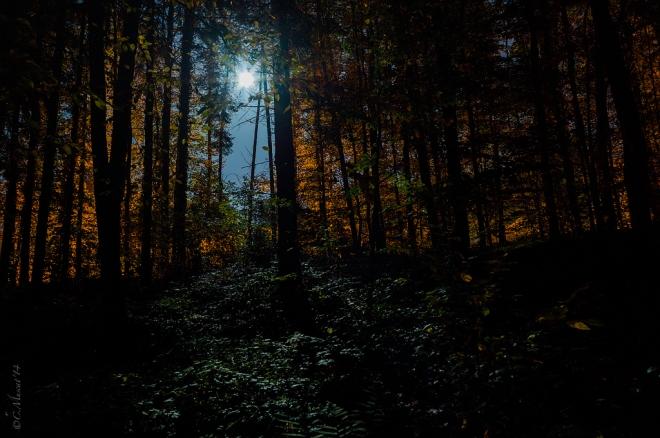 Parc communal lune 11.2014 © Cedric Muscat - 2