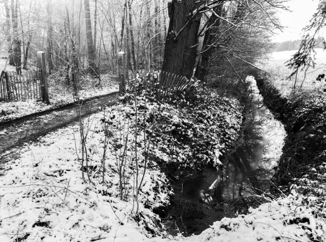 Le Plagniau Rosières (neige) 12.2014 © Cedric Muscat - 2