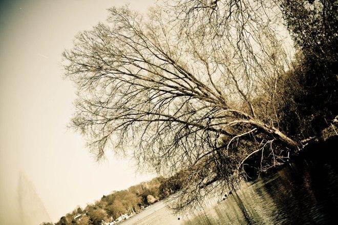 22 lac de genval © philippe clabots