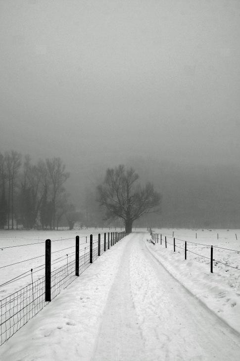 29 vallée de la lasne © gilbert nauwelaers