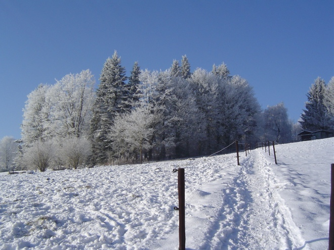 sentier françoise humblet-vieujant © gilbert nauwelaers