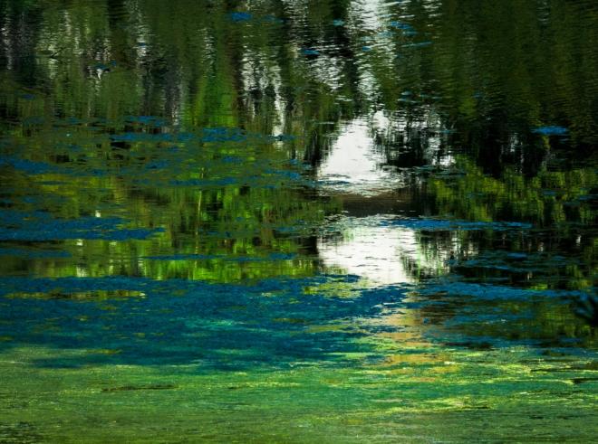 1F Lunar rendez-vous (étang Gilet) © Cedric Muscat-001