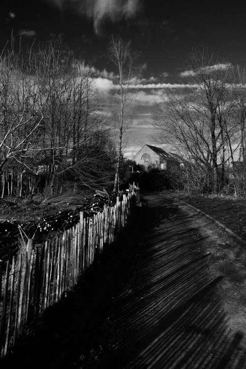 223 Sentier de Trelon 2.2016 © Eric de Séjournet 5