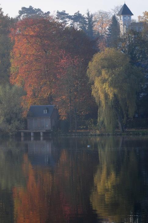 lac de genval 11.2012 © gilbert nauwelaers.2012 © gilbert nauwelaers-005