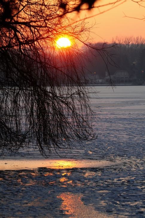 lac de genval 2.2012 © gilbert nauwelaers