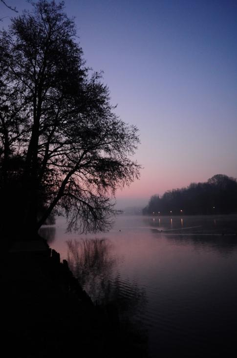 lac de genval 3.2012 © gilbert nauwelaers-002