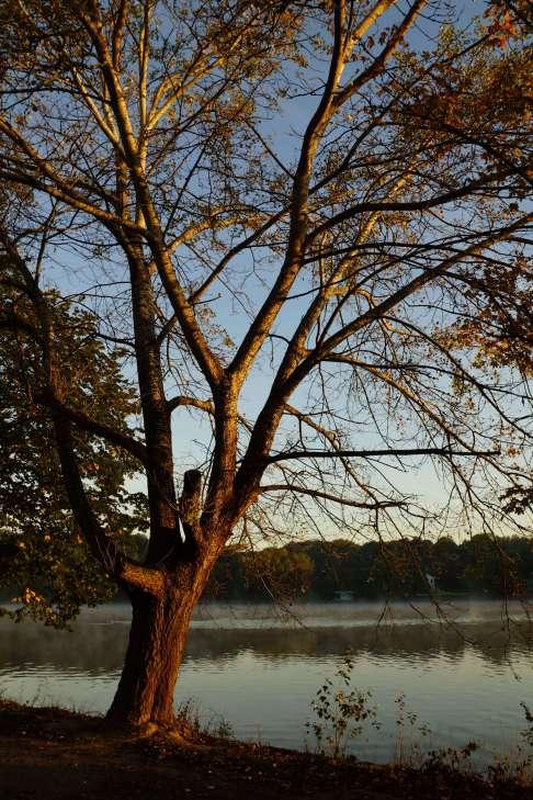 Lac de Genval 9.2012 © Eric de Séjournet-009