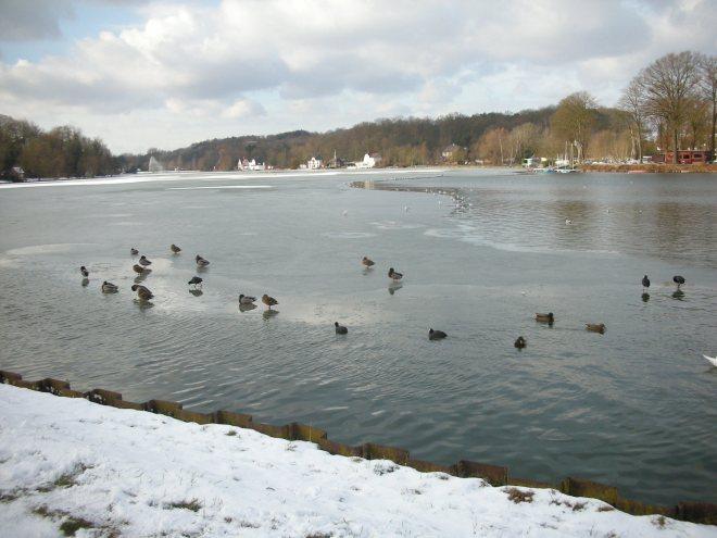 lac de genval 1.2010 © andré-marie simal