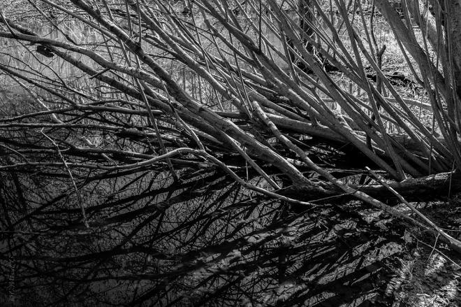 anciennes papeteries de genval 4.2013 © cedric muscat.g